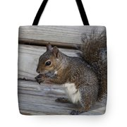 Eastern Gray Squirrel-4 Tote Bag