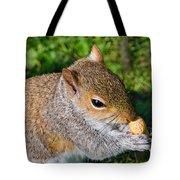 Eastern Grey Squirrel Tote Bag