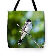 Eastern Kindbird  Tote Bag