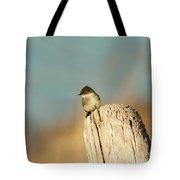 Eastern Phoebe Tote Bag