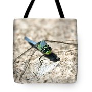 Eastern Pondhawk Tote Bag