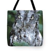 Eastern Screech Owl In Tree Tote Bag