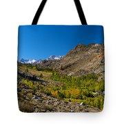 Eastern Sierras 11 Tote Bag