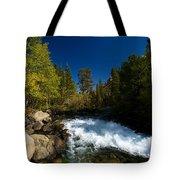 Eastern Sierras 14 Tote Bag