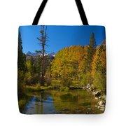 Eastern Sierras 16 Tote Bag