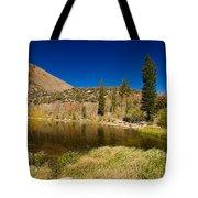 Eastern Sierras 18 Tote Bag