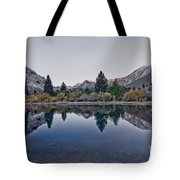 Eastern Sierras Reflection Tote Bag