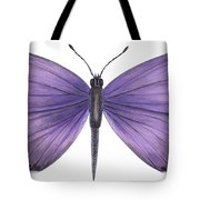 Eastern Tailed Blue Butterfly Tote Bag by Anonymous