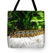 Eastern Tent Caterpillar Tote Bag