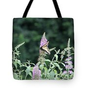 Eastern Tiger Swallowtail Butterfly -  Featured In Wildlife Group Tote Bag