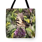 Eastern Tiger Swallowtail - Butterfly Tote Bag