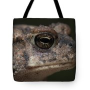 Eastern Toad Detail Tote Bag