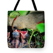 Eat Up Tote Bag by Frozen in Time Fine Art Photography