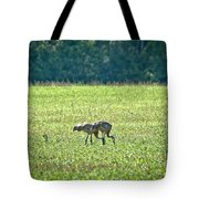 Eating Cranes Tote Bag