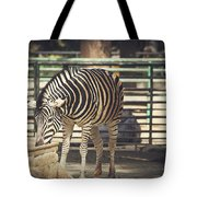 Eating Zebra Tote Bag