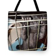 Ebony Hang In There Tote Bag