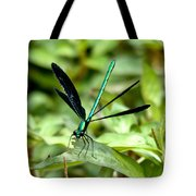 Ebony Jewelwing Tote Bag