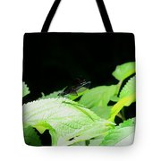 Ebony Jewelwing Male Tote Bag
