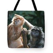 Ebony Langurs Tote Bag