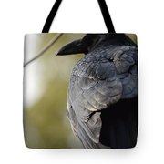 Ebony Shawl Tote Bag