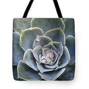 Echeveria With Water Drops Tote Bag