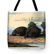 Echidna Or Porcupine Anteater Tote Bag