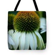 Echinacea Gold II Tote Bag