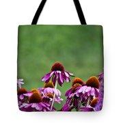 Echinacea Purpurea Tote Bag