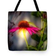 Echinacea Sunrise Tote Bag