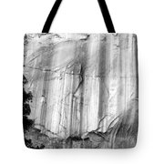 Echo Canyon Bw Tote Bag