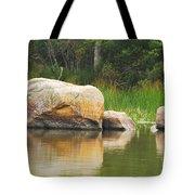 Echo Lake Reflection Tote Bag