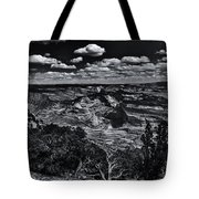 Echo Park From The Ridge Black And White Tote Bag