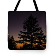 Eclipse In Yosemite Tote Bag