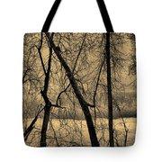 Edge Of Winter Tote Bag