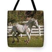 Effortless Gait D3028 Tote Bag by Wes and Dotty Weber