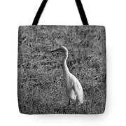Egret In Black And White Tote Bag