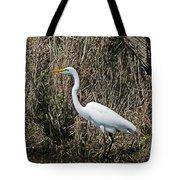 Egret In Marsh In Display  Tote Bag