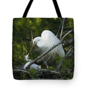 Louisiana Egret With Babies In Swamp Tote Bag