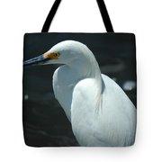 Egret Of Sanibel 6 Tote Bag