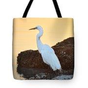 Egret On Dunedin Causeway Tote Bag