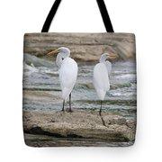 Egrets 4649 Tote Bag
