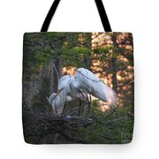 Egrets At Nest Tote Bag