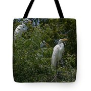Egrets In Tree Tote Bag