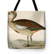 Egyptian Goose Tote Bag