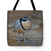 Egyptian Plover Tote Bag