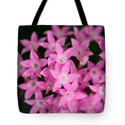 Egyptian Star Flowers Or Penta Tote Bag