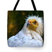 Egyptian Vulture Tote Bag