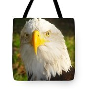 Bald Eagle Head Shot Two Tote Bag