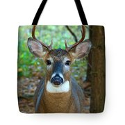 Eight Point Face To Face Tote Bag