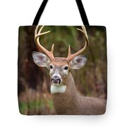 Eight Points Of Awesome Tote Bag by Lori Tambakis
